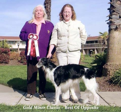 Connor the Silken Windhound show win pic with Patricia Gail Burnham and Emily Olson ISWS Champion