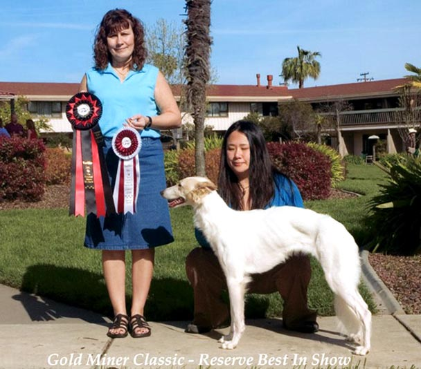 Sazi the Talisman Silken Windhound and Rita Seibel of Rarities and her Reserve Best in Show and Best of Breed Best in Group winning picture